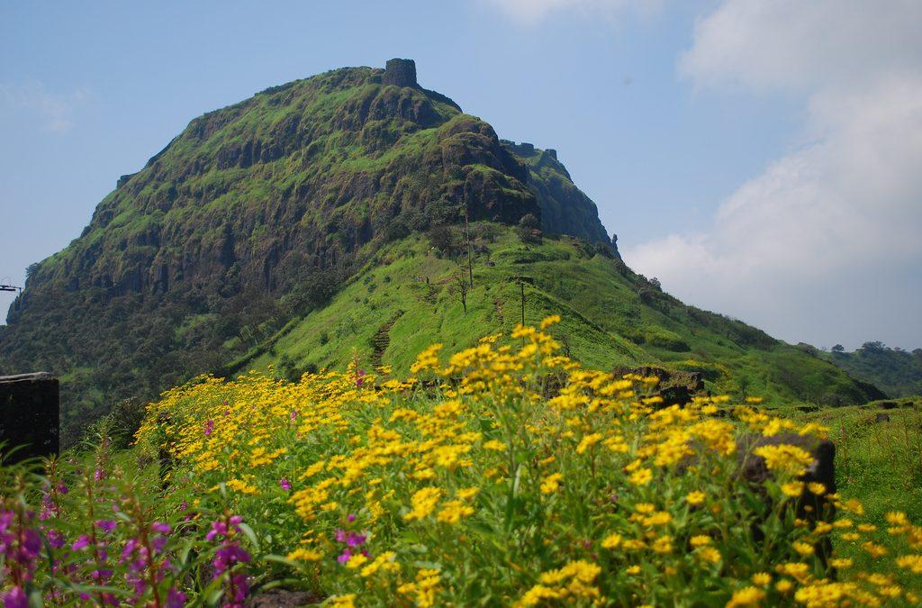 Rajgad_after_monsoon-1024x675